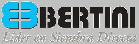 Ing. Bertini